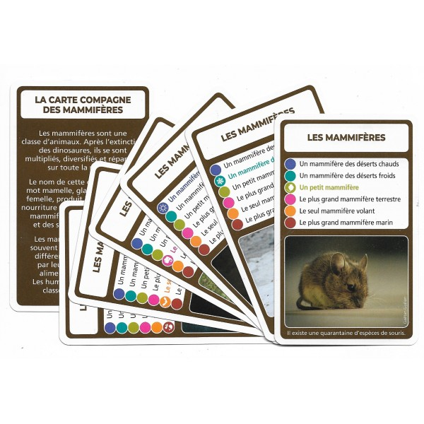 SoCartes est un jeu de société pour les enfants - Les mammifères