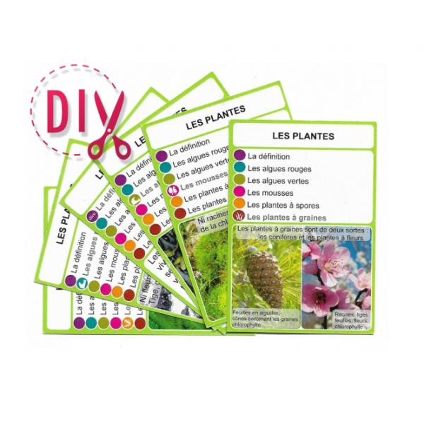 Les plantes - DIY - SoCartes est un jeu de société pour les enfants