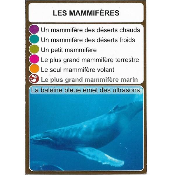 Les mammifères1- DIY - SoCartes est un jeu de société pour les enfants