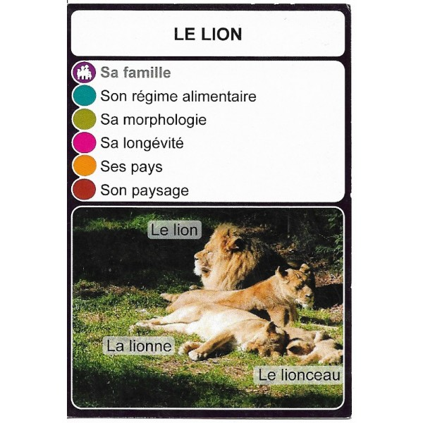 Le lion2- DIY - SoCartes est un jeu de société pour les enfants