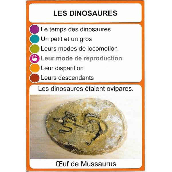 Les dinosaures1- DIY - SoCartes est un jeu de société pour les enfants