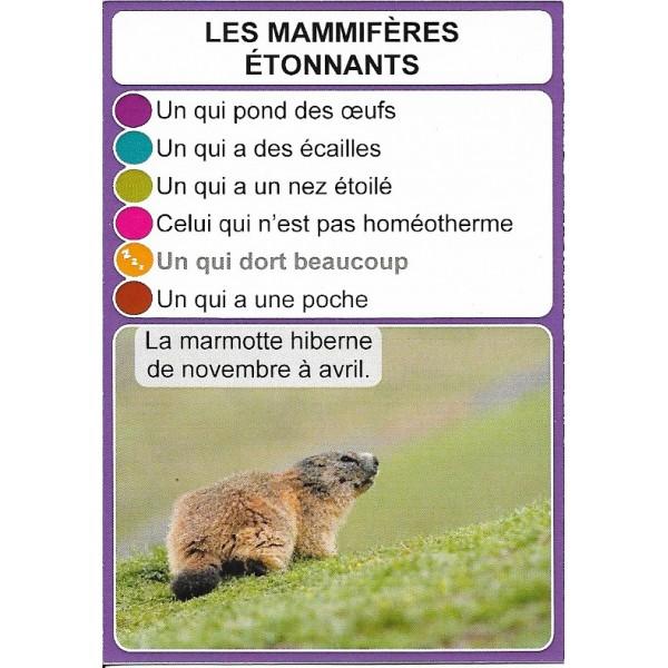 Les mammifères étonnants1- DIY - SoCartes est un jeu de société pour les enfants