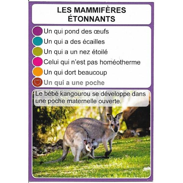 Les mammifères étonnants2- DIY - SoCartes est un jeu de société pour les enfants