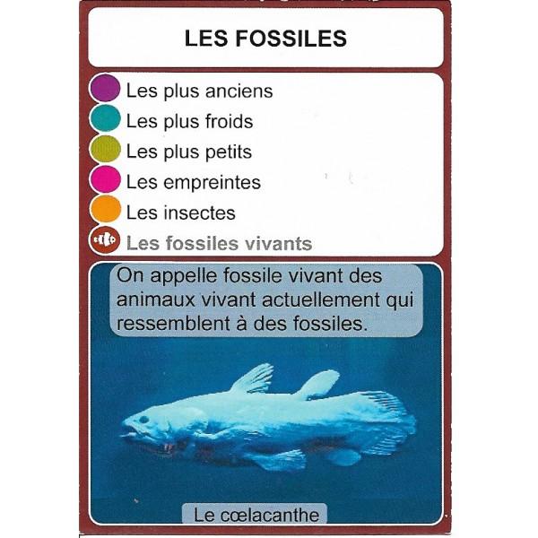 Les fossiles1- DIY - SoCartes est un jeu de société pour les enfants