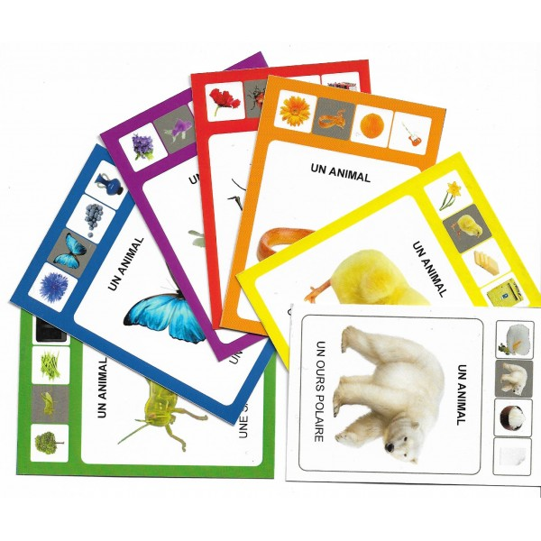 Mon-premier-socartes - SoCartes est un jeu de société pour les enfants